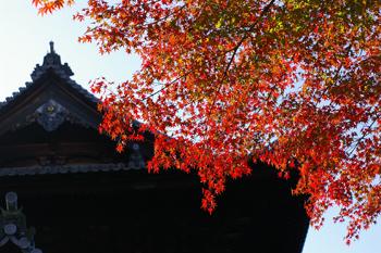 nanzenji051109